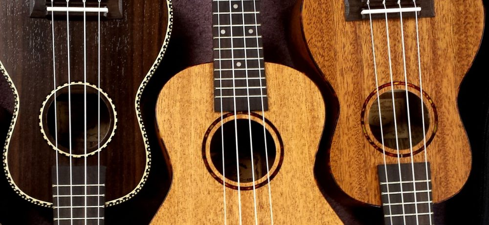 best ukeleles under 500 dollars