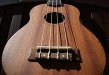 best ukuleles under 500 dollars