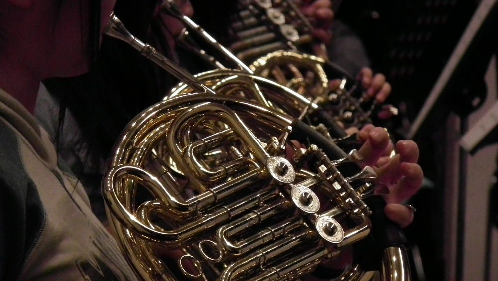 Best Beginner French Horn Guide