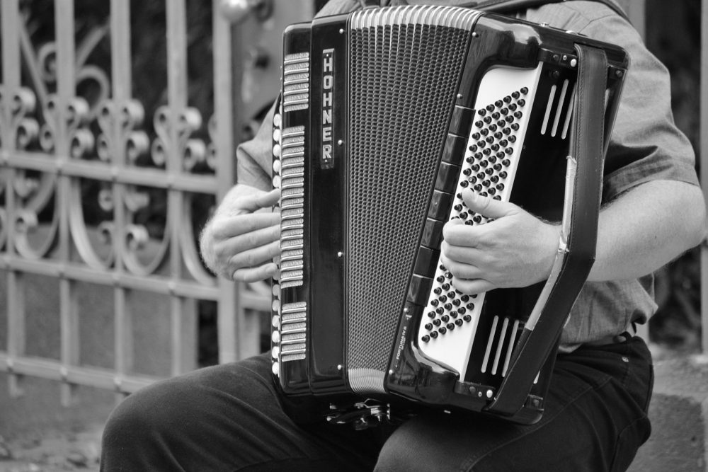 5 Best Accordions For Beginners - GuitarJunky